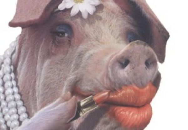 Are you putting lipstick on a pig with your website?