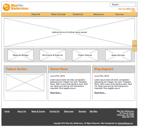 A wireframe is a blueprint of a website.