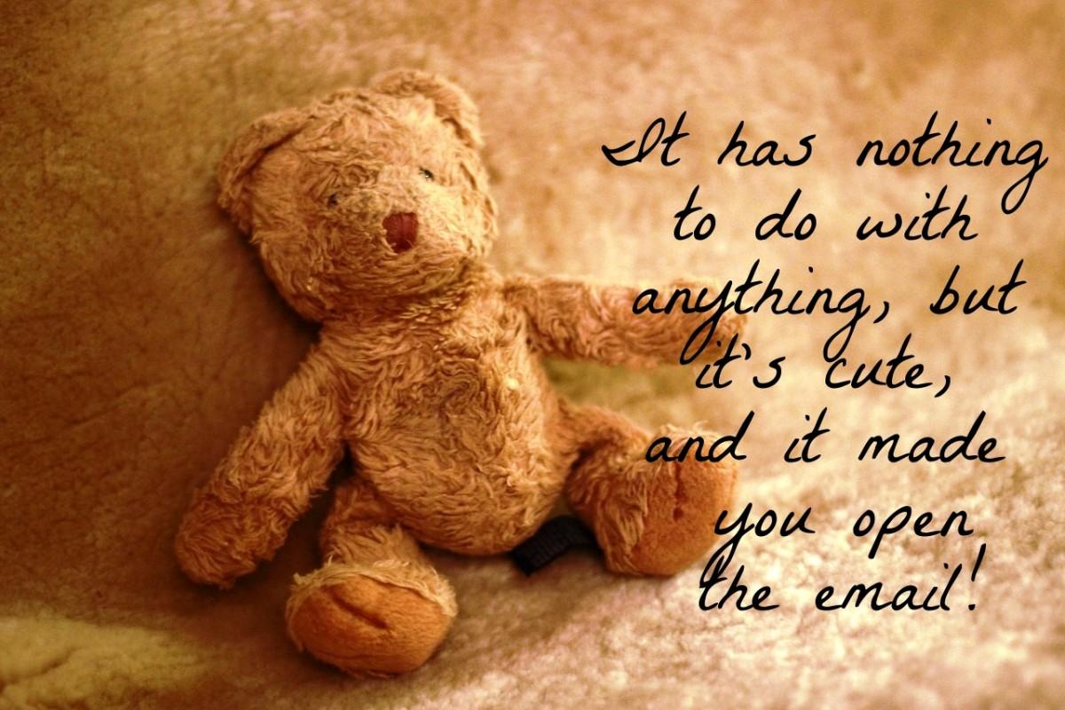teddy bear email