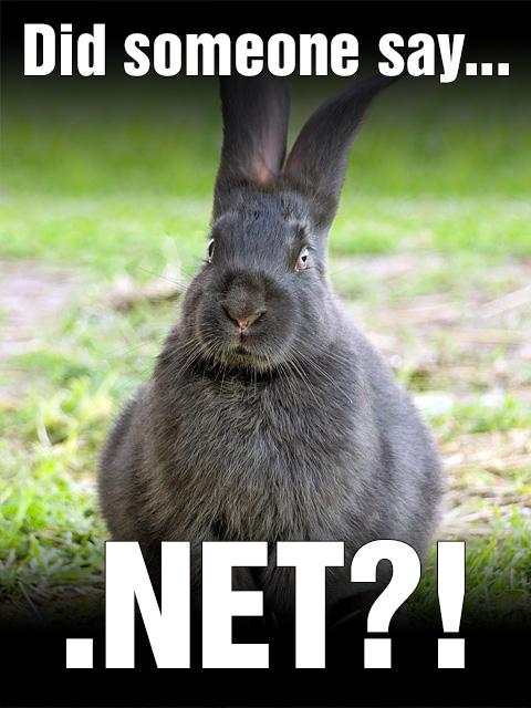 Rabbit meme