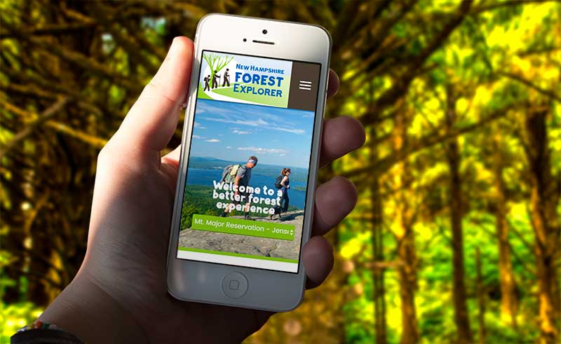 Person holding phone with the Forest Explorer Application open, in a forest.